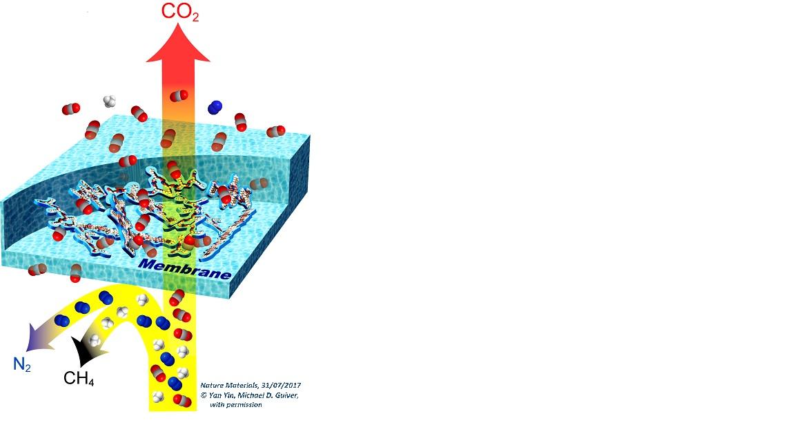 membrane ultrapermeabili per filtrare co2